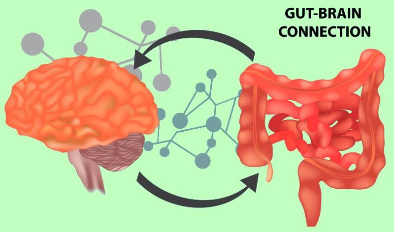 Juicing and Gut Health. Juicing Detox Plan